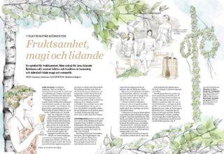 Björken i folktron ur senaste numret av Skogsvärden. Illustratör Madelen Lindgren